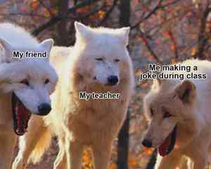 Laughing Wolves Meme Template