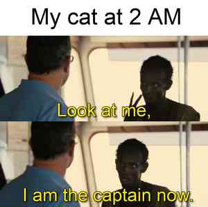 Look At Me I Am the Captain Now Meme Template