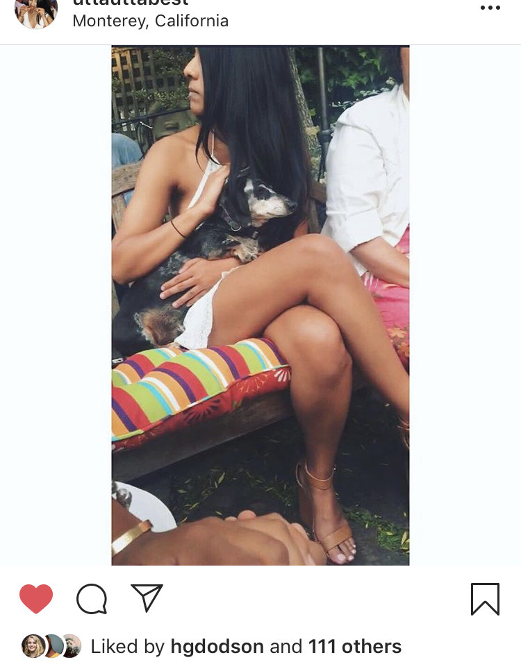 A screenshot of an Instagram post with a white border added.