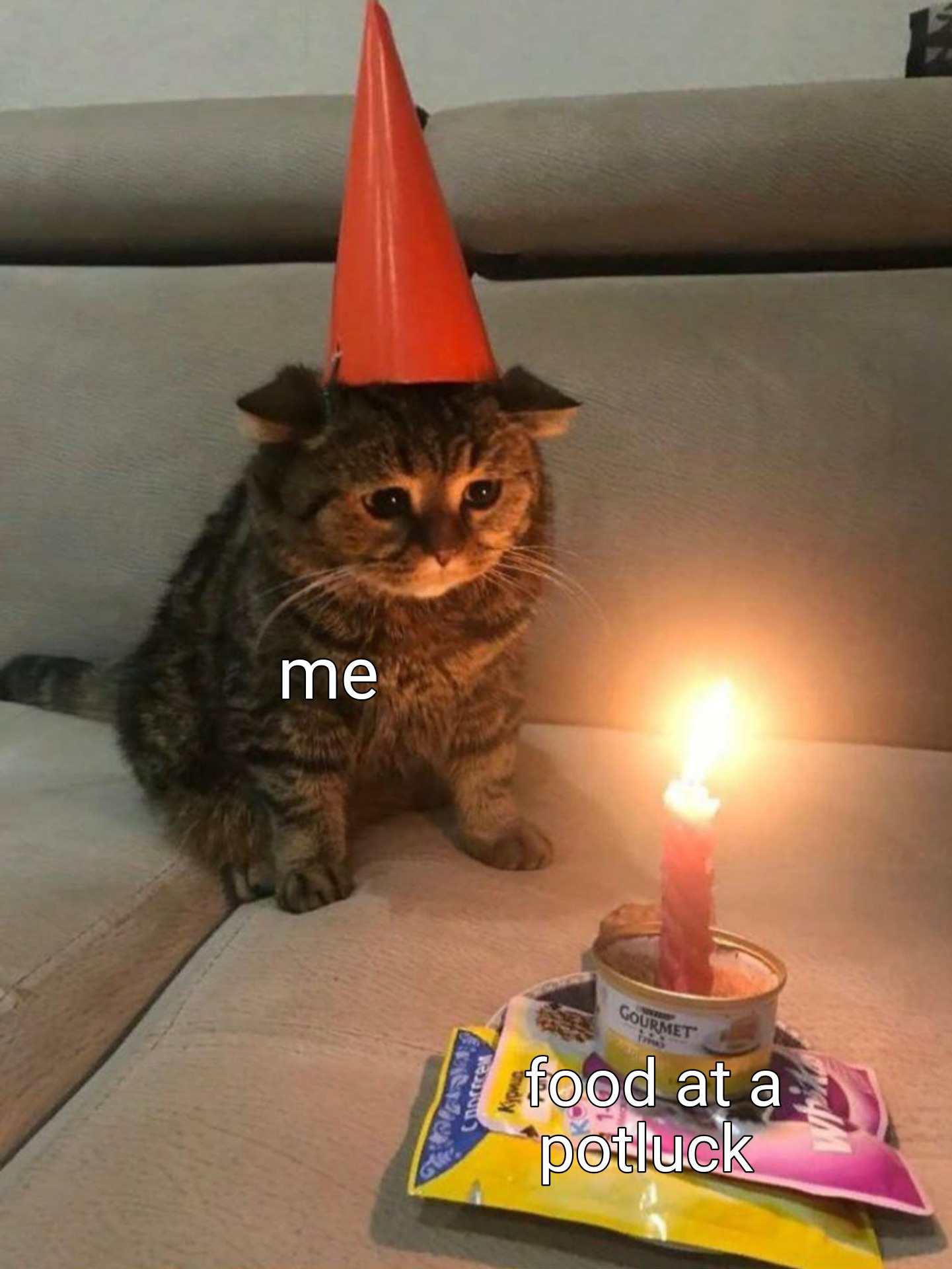 Sad Birthday Cat Meme Template